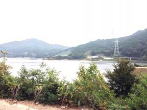 加瀬川ダム 1
