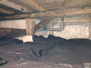 床下竹炭2