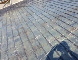 屋根 シーラー1