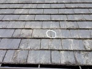 既存 屋根 1