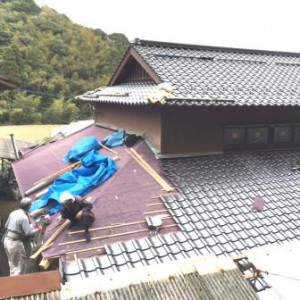 東側 屋根1